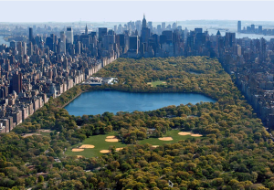Central Park (photo NYC Parks)